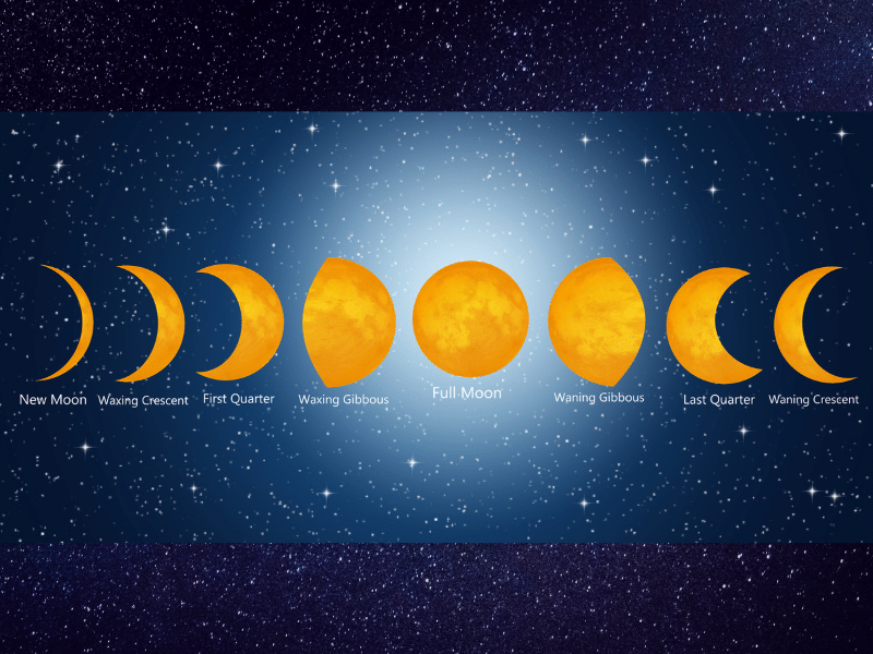 astrology phases of the moon for prediction